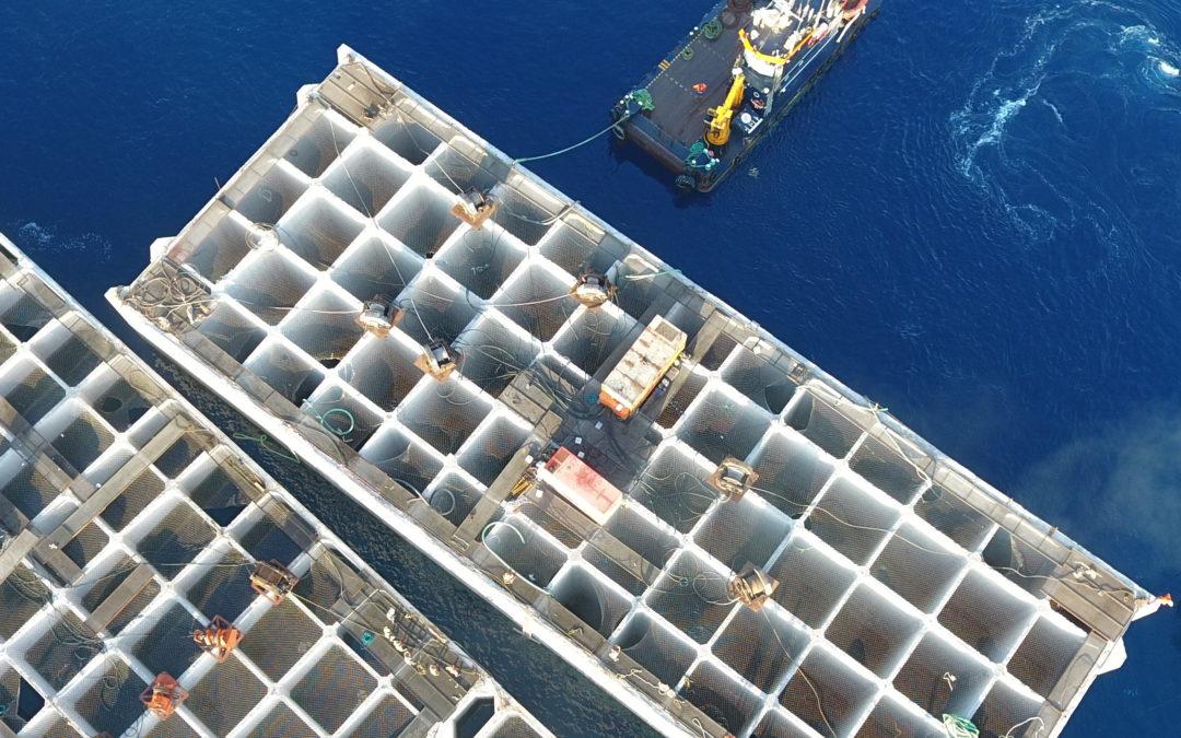 IHCANTABRIA participa en el proyecto SAFE, en el que se desarrollará un sistema de control para el fondeo autónomo de estructuras en obras marítimas.