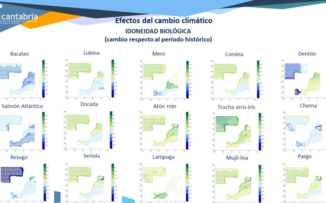 IHCantabria completes the ATLAS-PRO project in which we analyse the effects of climate change on marine aquaculture in Spanish waters