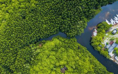 IHCantabria participa en un nuevo informe que confirma la rentabilidad de un sistema de seguros destinado a la conservación de los ecosistemas marinos
